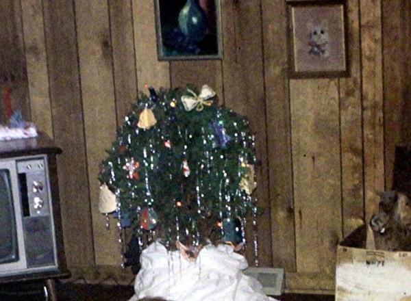 Copy of Christmas Bush.A